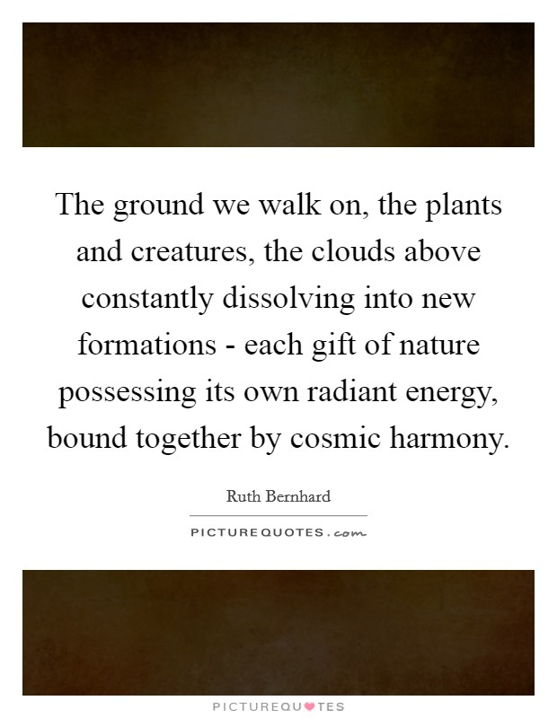 The ground we walk on, the plants and creatures, the clouds above constantly dissolving into new formations - each gift of nature possessing its own radiant energy, bound together by cosmic harmony Picture Quote #1