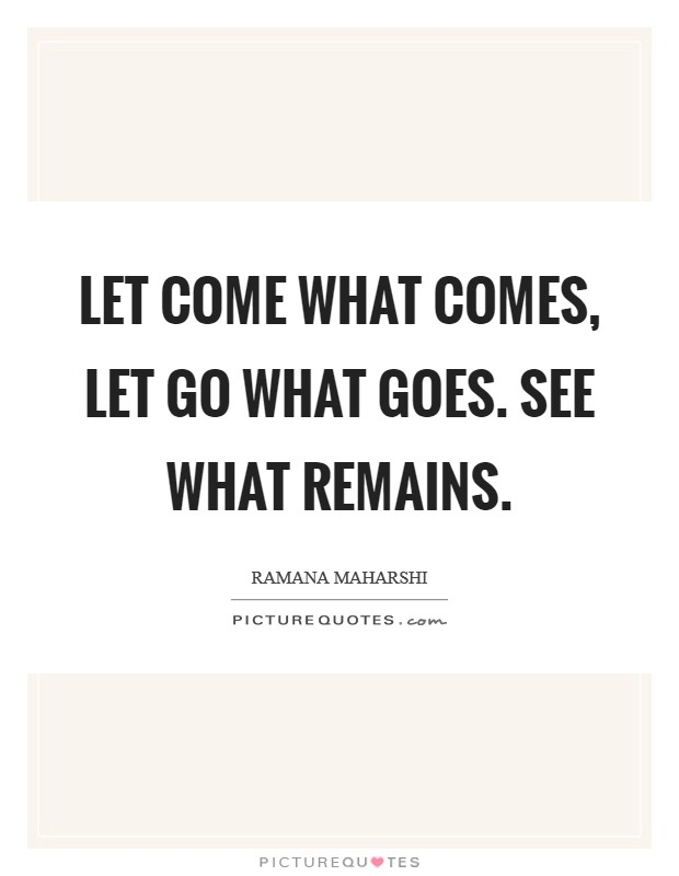 Let come what comes, let go what goes. See what remains Picture Quote #1