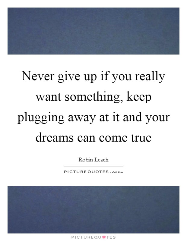 Never give up if you really want something, keep plugging away at it and your dreams can come true Picture Quote #1