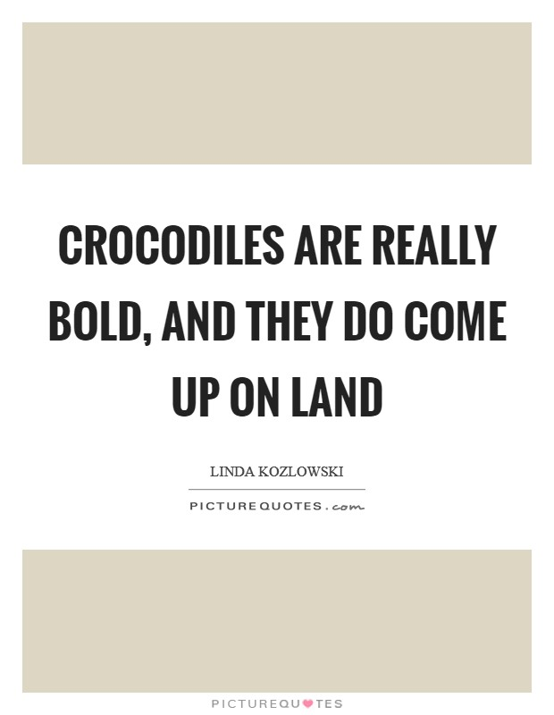 Crocodiles are really bold, and they do come up on land Picture Quote #1