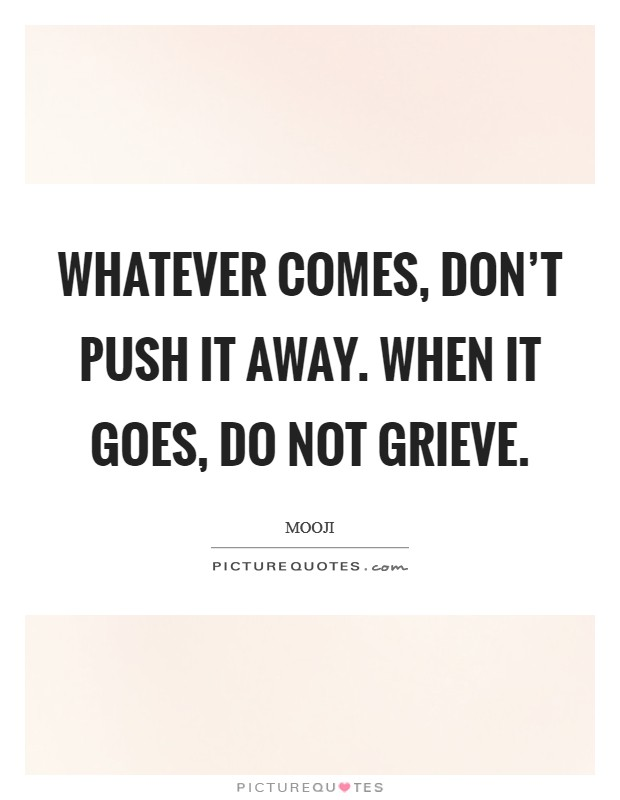 Whatever comes, don't push it away. When it goes, do not grieve Picture Quote #1