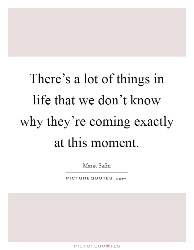 There's a lot of things in life that we don't know why they're coming exactly at this moment Picture Quote #1