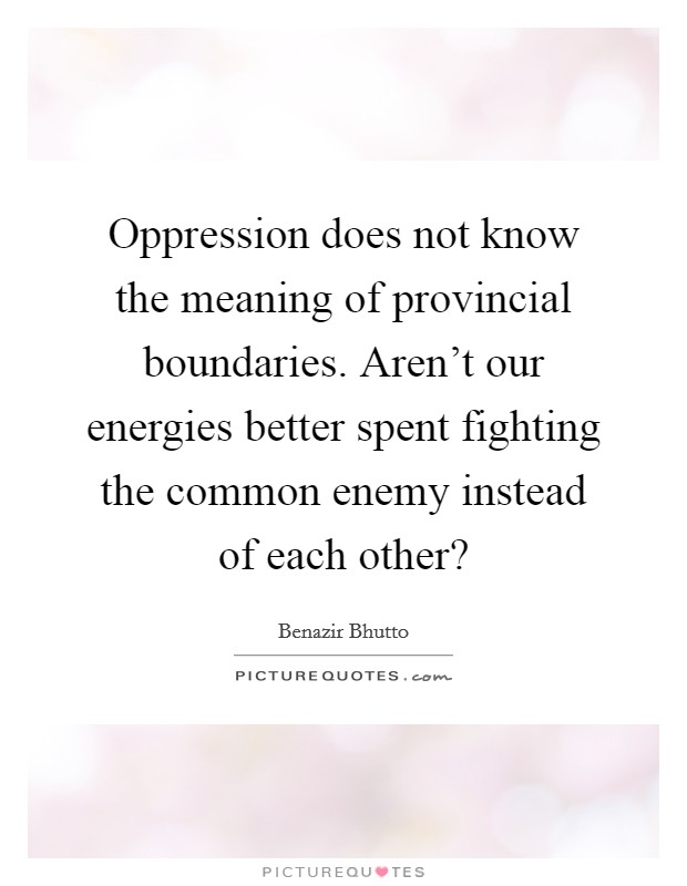 Oppression does not know the meaning of provincial boundaries. Aren't our energies better spent fighting the common enemy instead of each other? Picture Quote #1