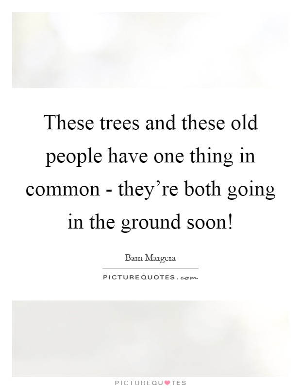 These trees and these old people have one thing in common - they're both going in the ground soon! Picture Quote #1