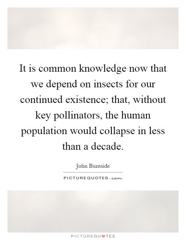 It is common knowledge now that we depend on insects for our continued existence; that, without key pollinators, the human population would collapse in less than a decade Picture Quote #1