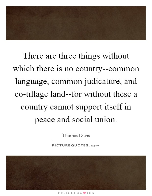 There are three things without which there is no country--common language, common judicature, and co-tillage land--for without these a country cannot support itself in peace and social union Picture Quote #1