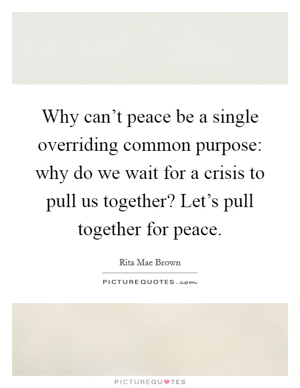 Why can't peace be a single overriding common purpose: why do we wait for a crisis to pull us together? Let's pull together for peace Picture Quote #1