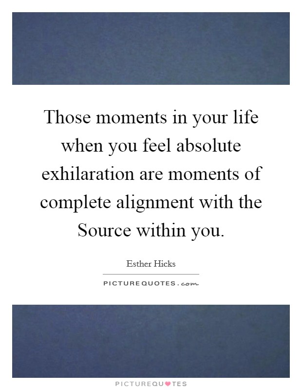 Those moments in your life when you feel absolute exhilaration are moments of complete alignment with the Source within you Picture Quote #1