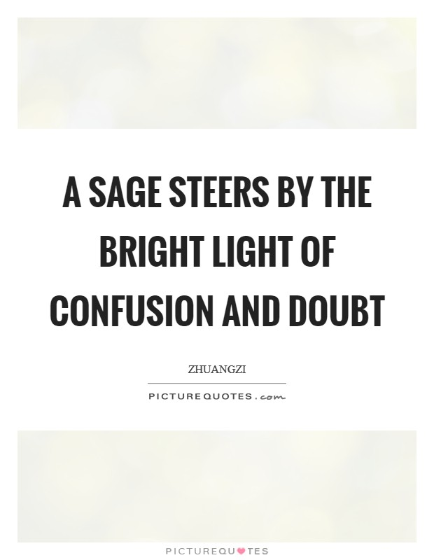 A sage steers by the bright light of confusion and doubt Picture Quote #1