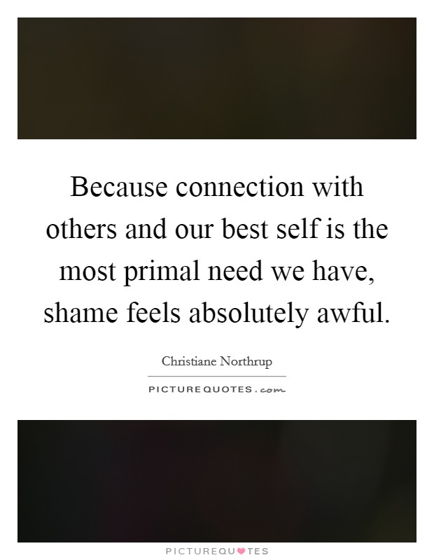 Because connection with others and our best self is the most primal need we have, shame feels absolutely awful Picture Quote #1