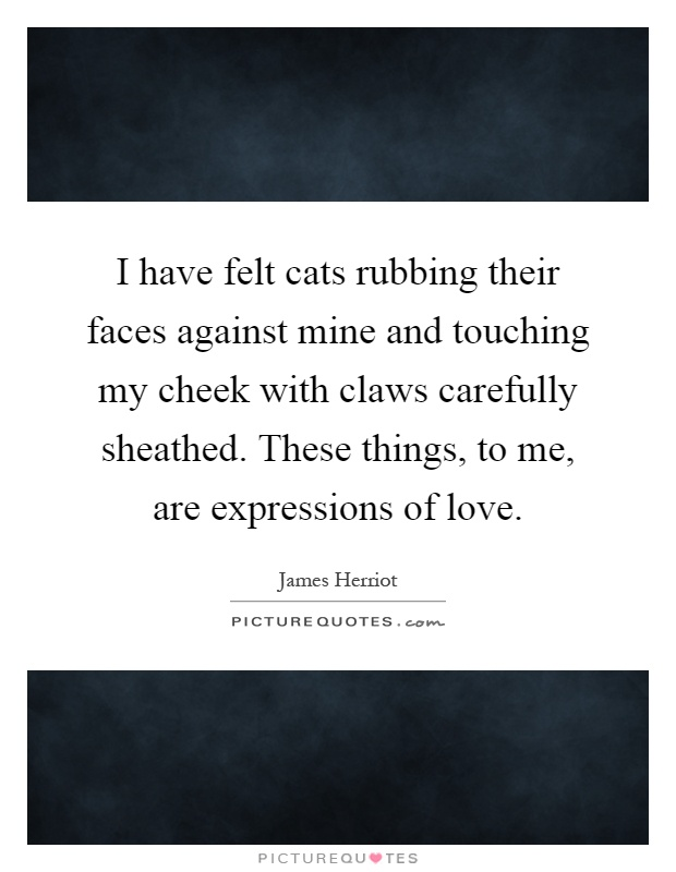 I have felt cats rubbing their faces against mine and touching my cheek with claws carefully sheathed. These things, to me, are expressions of love Picture Quote #1