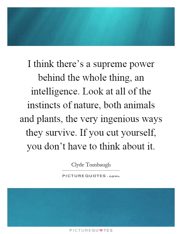 I think there's a supreme power behind the whole thing, an intelligence. Look at all of the instincts of nature, both animals and plants, the very ingenious ways they survive. If you cut yourself, you don't have to think about it Picture Quote #1