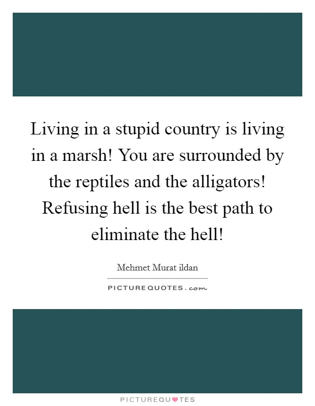 Living in a stupid country is living in a marsh! You are surrounded by the reptiles and the alligators! Refusing hell is the best path to eliminate the hell! Picture Quote #1