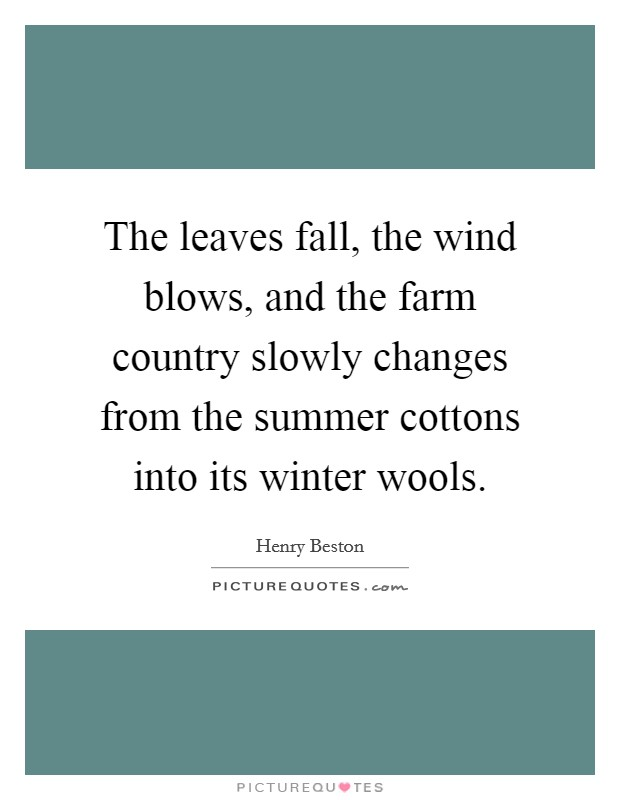 The leaves fall, the wind blows, and the farm country slowly changes from the summer cottons into its winter wools Picture Quote #1