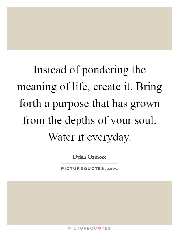 Instead of pondering the meaning of life, create it. Bring forth a purpose that has grown from the depths of your soul. Water it everyday Picture Quote #1