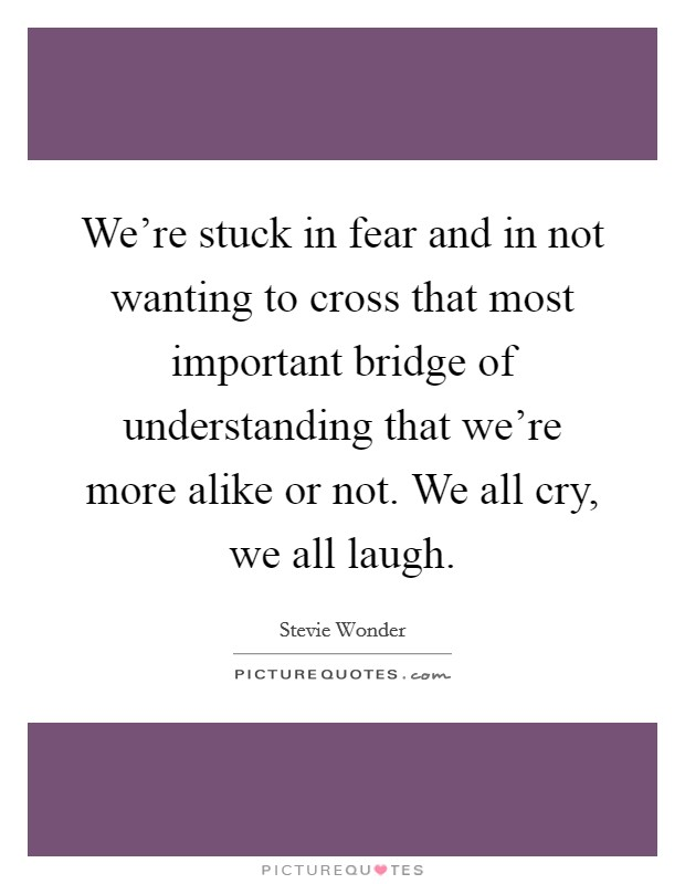 We're stuck in fear and in not wanting to cross that most important bridge of understanding that we're more alike or not. We all cry, we all laugh Picture Quote #1