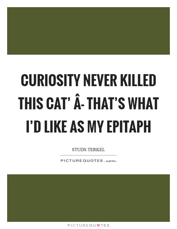 Curiosity never killed this cat' Â- that's what I'd like as my epitaph Picture Quote #1