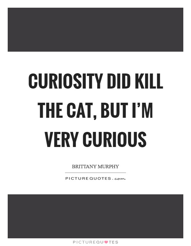Curiosity did kill the cat, but I'm very curious Picture Quote #1