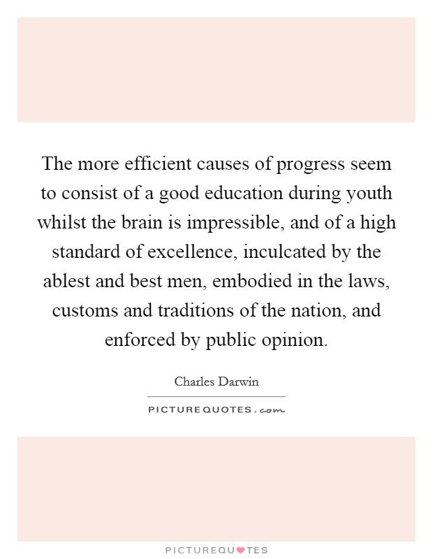 The more efficient causes of progress seem to consist of a good education during youth whilst the brain is impressible, and of a high standard of excellence, inculcated by the ablest and best men, embodied in the laws, customs and traditions of the nation, and enforced by public opinion Picture Quote #1