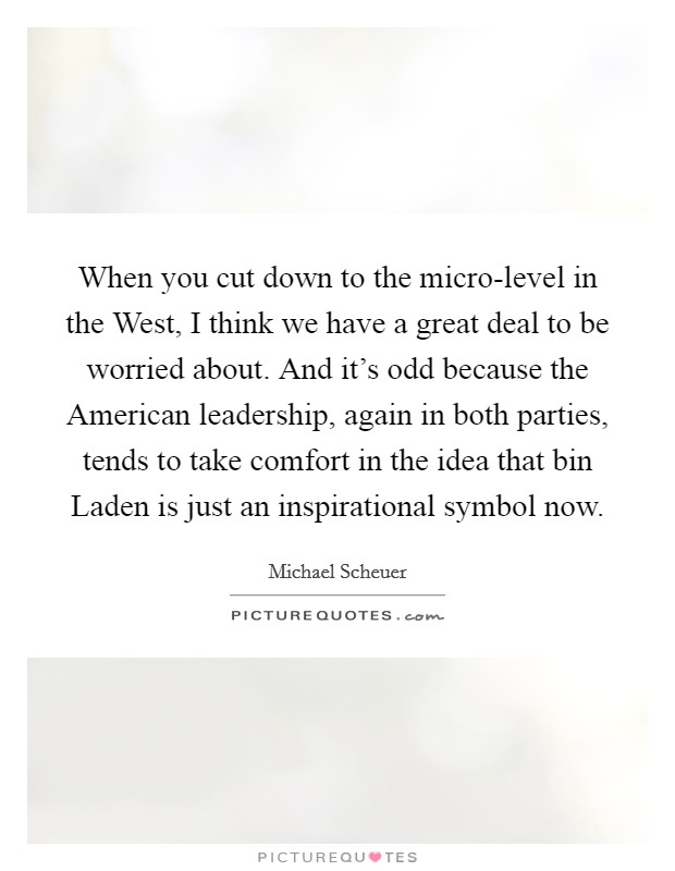 When you cut down to the micro-level in the West, I think we have a great deal to be worried about. And it's odd because the American leadership, again in both parties, tends to take comfort in the idea that bin Laden is just an inspirational symbol now Picture Quote #1