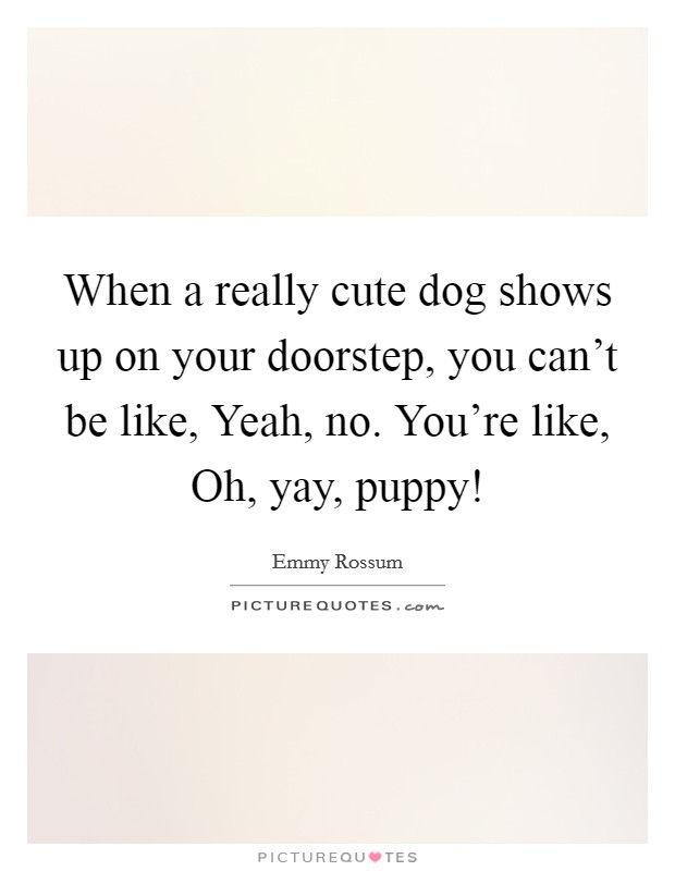 When a really cute dog shows up on your doorstep, you can't be like, Yeah, no. You're like, Oh, yay, puppy! Picture Quote #1