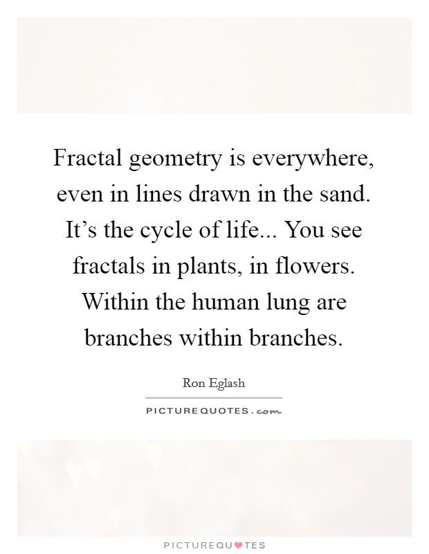 Fractal geometry is everywhere, even in lines drawn in the sand. It's the cycle of life... You see fractals in plants, in flowers. Within the human lung are branches within branches Picture Quote #1