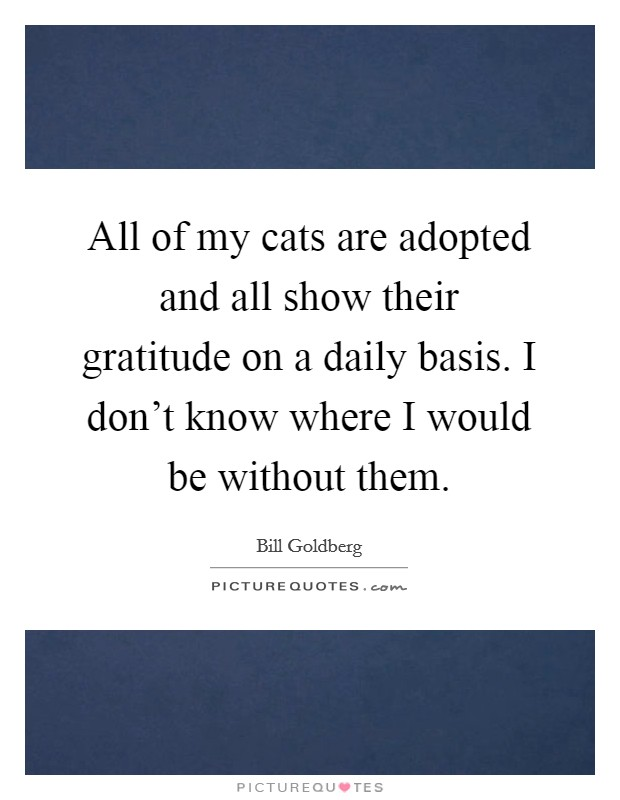 All of my cats are adopted and all show their gratitude on a daily basis. I don't know where I would be without them Picture Quote #1