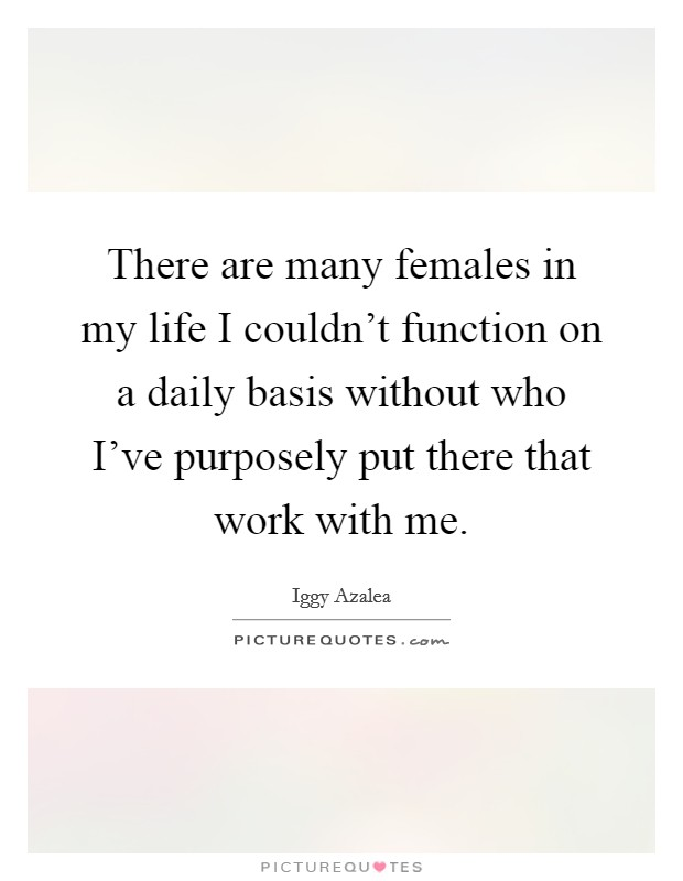 There are many females in my life I couldn't function on a daily basis without who I've purposely put there that work with me Picture Quote #1