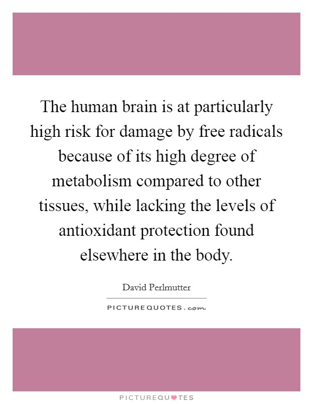 The human brain is at particularly high risk for damage by free radicals because of its high degree of metabolism compared to other tissues, while lacking the levels of antioxidant protection found elsewhere in the body. Picture Quote #1