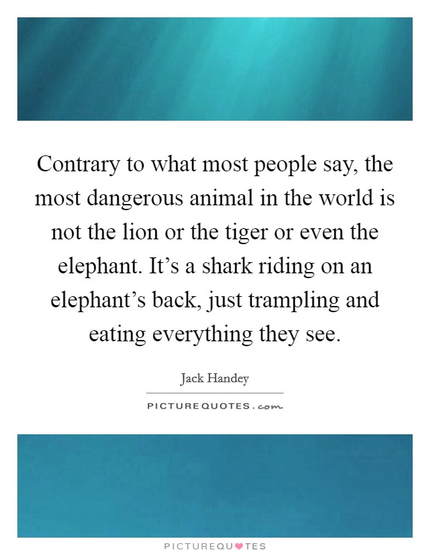 Contrary to what most people say, the most dangerous animal in the world is not the lion or the tiger or even the elephant. It's a shark riding on an elephant's back, just trampling and eating everything they see Picture Quote #1