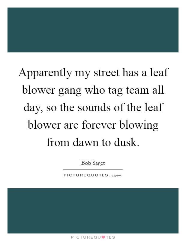 Apparently my street has a leaf blower gang who tag team all day, so the sounds of the leaf blower are forever blowing from dawn to dusk Picture Quote #1