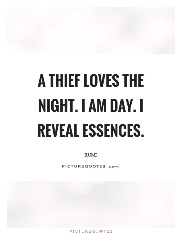 A thief loves the night. I am day. I reveal essences Picture Quote #1