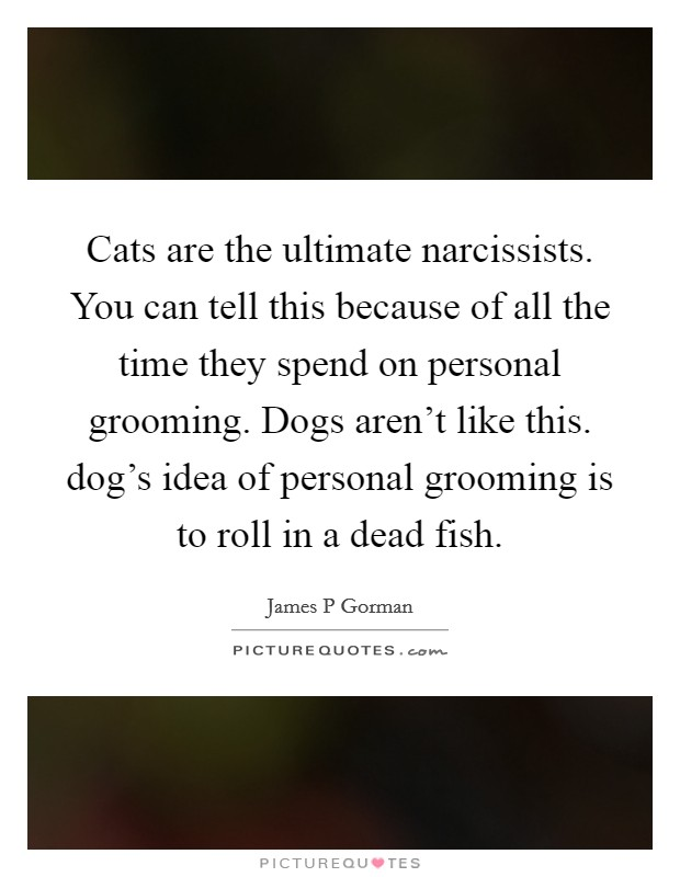 Cats are the ultimate narcissists. You can tell this because of all the time they spend on personal grooming. Dogs aren't like this. dog's idea of personal grooming is to roll in a dead fish Picture Quote #1