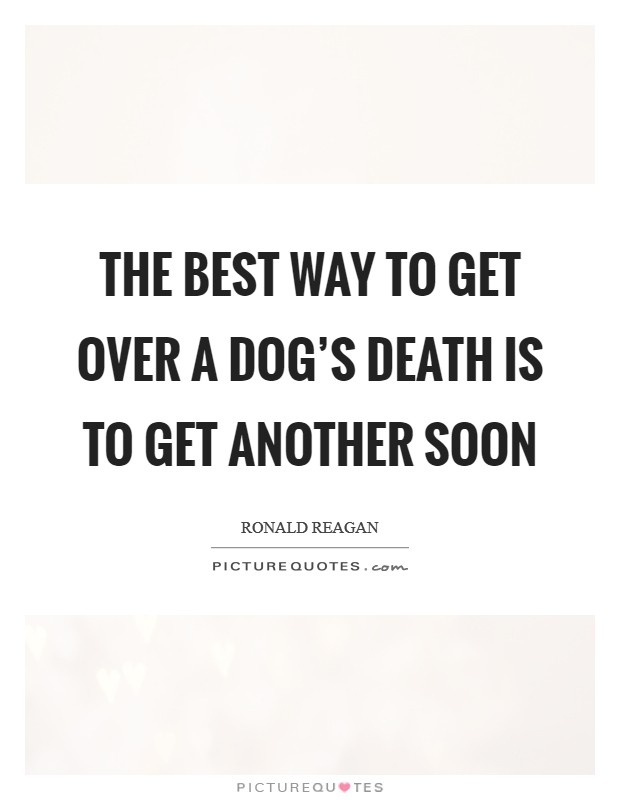 Death Dog Quotes   Death Dog Sayings   Death Dog Picture Quotes