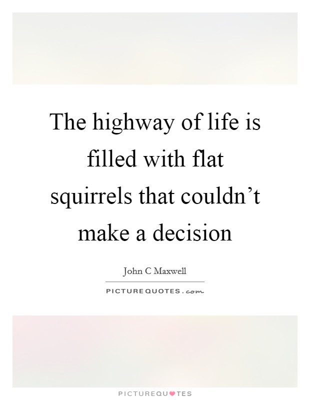 The highway of life is filled with flat squirrels that couldn't make a decision Picture Quote #1