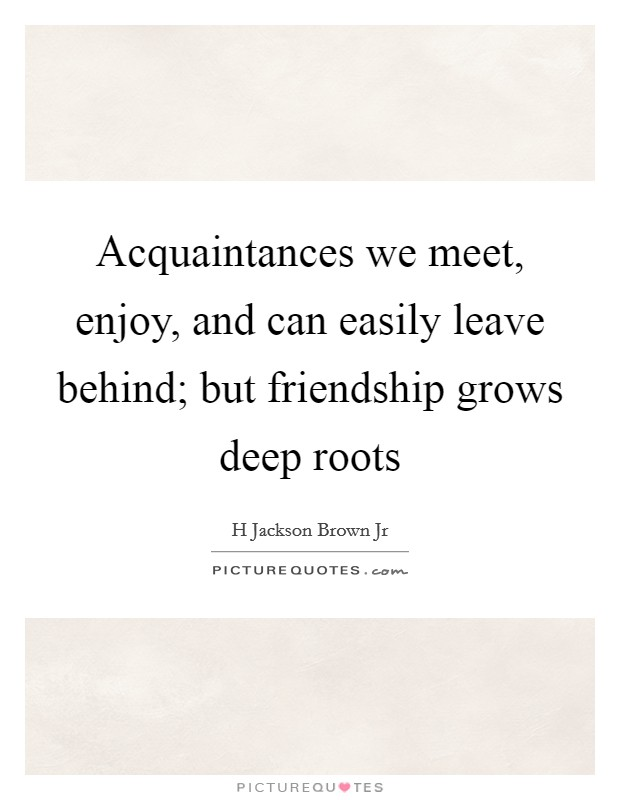Acquaintances we meet, enjoy, and can easily leave behind; but friendship grows deep roots Picture Quote #1