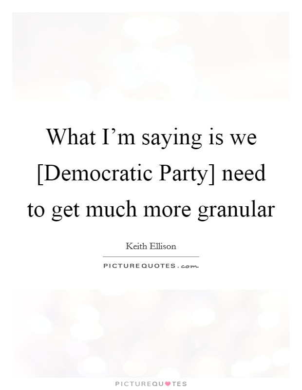 What I'm saying is we [Democratic Party] need to get much more granular Picture Quote #1