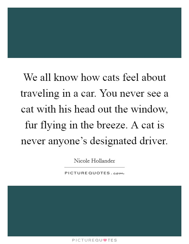 We all know how cats feel about traveling in a car. You never see a cat with his head out the window, fur flying in the breeze. A cat is never anyone's designated driver Picture Quote #1