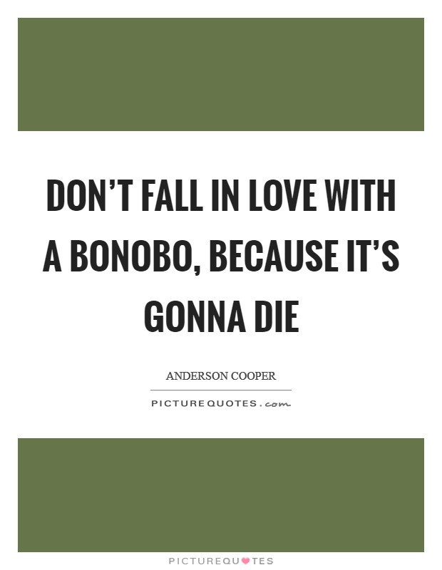 Don't fall in love with a bonobo, because it's gonna die Picture Quote #1