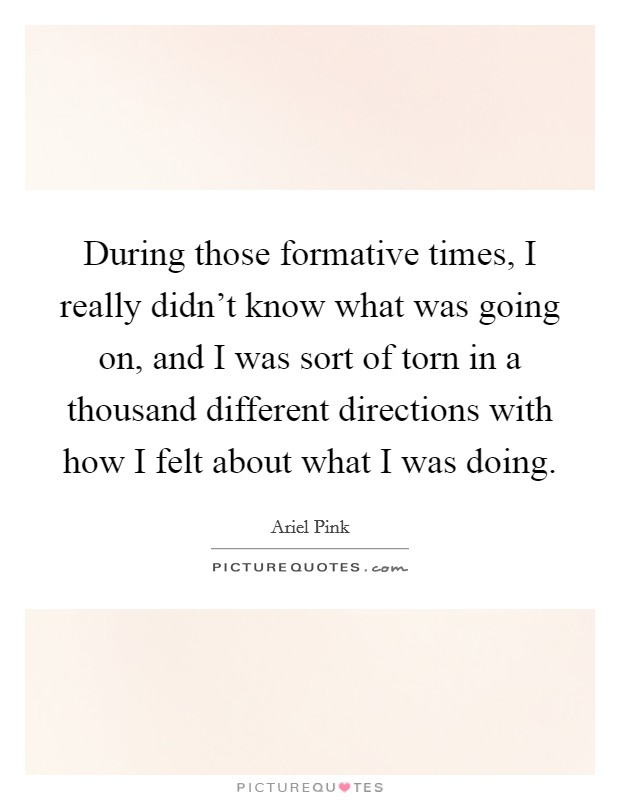 During those formative times, I really didn't know what was going on, and I was sort of torn in a thousand different directions with how I felt about what I was doing Picture Quote #1