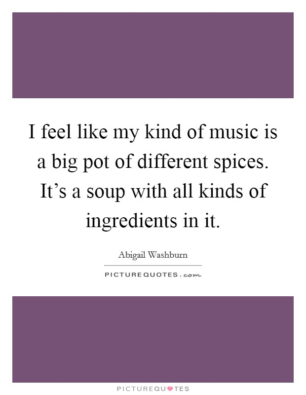 I feel like my kind of music is a big pot of different spices. It's a soup with all kinds of ingredients in it. Picture Quote #1