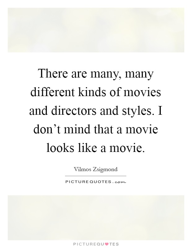 There are many, many different kinds of movies and directors and styles. I don't mind that a movie looks like a movie Picture Quote #1