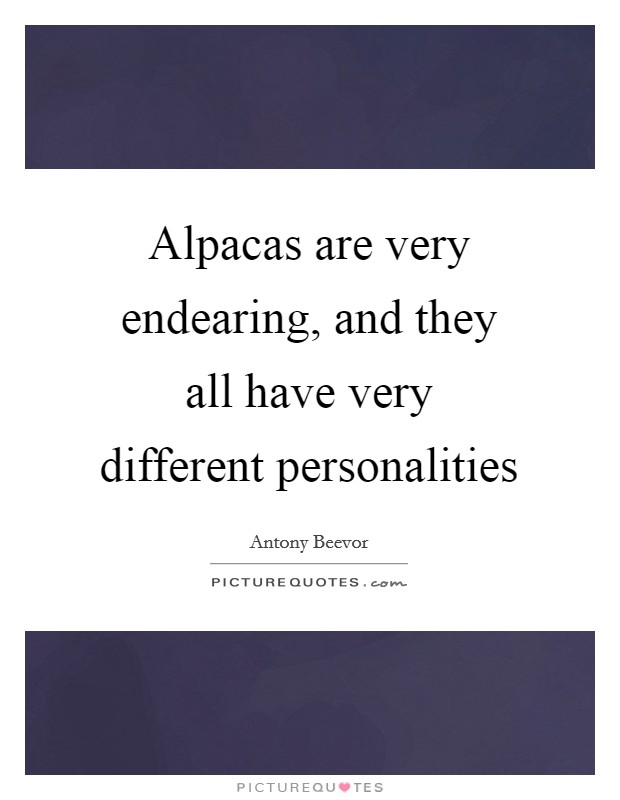 Alpacas are very endearing, and they all have very different personalities Picture Quote #1