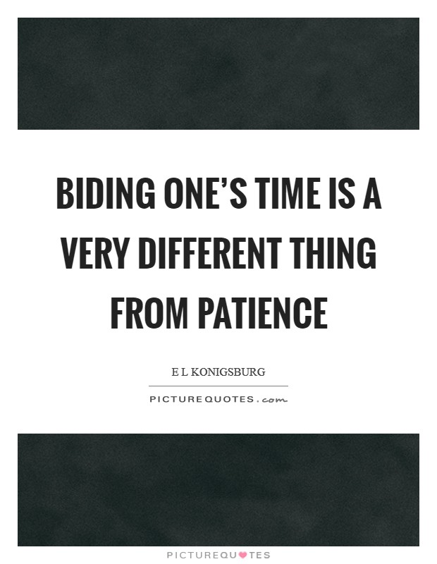 Biding one's time is a very different thing from patience Picture Quote #1