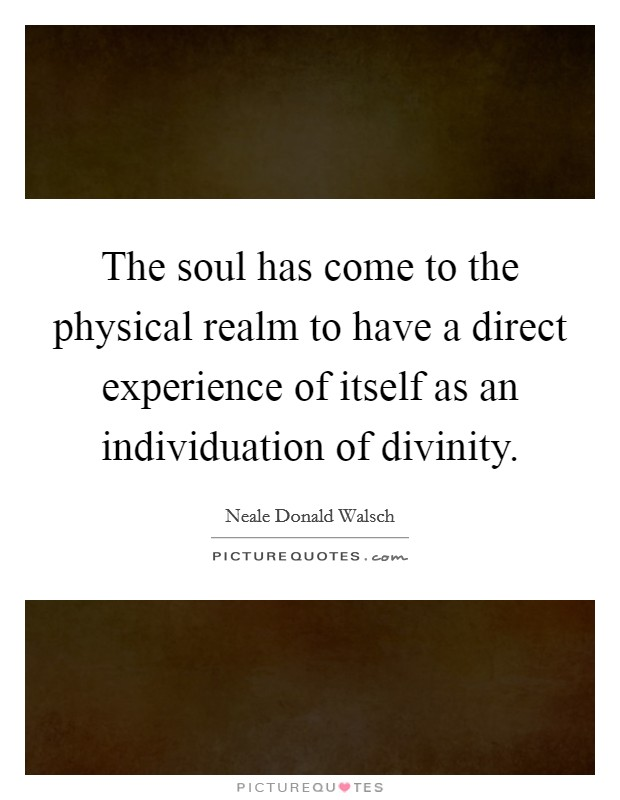 The soul has come to the physical realm to have a direct experience of itself as an individuation of divinity Picture Quote #1