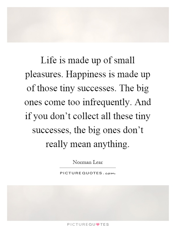Life is made up of small pleasures. Happiness is made up of those tiny successes. The big ones come too infrequently. And if you don't collect all these tiny successes, the big ones don't really mean anything Picture Quote #1