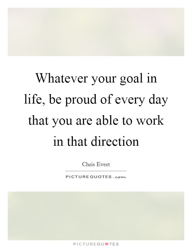 Whatever your goal in life, be proud of every day that you are able to work in that direction Picture Quote #1