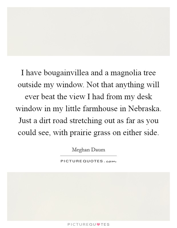 I have bougainvillea and a magnolia tree outside my window. Not that anything will ever beat the view I had from my desk window in my little farmhouse in Nebraska. Just a dirt road stretching out as far as you could see, with prairie grass on either side Picture Quote #1