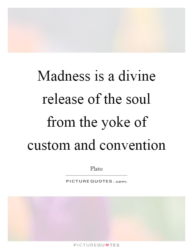 Madness is a divine release of the soul from the yoke of custom and convention Picture Quote #1