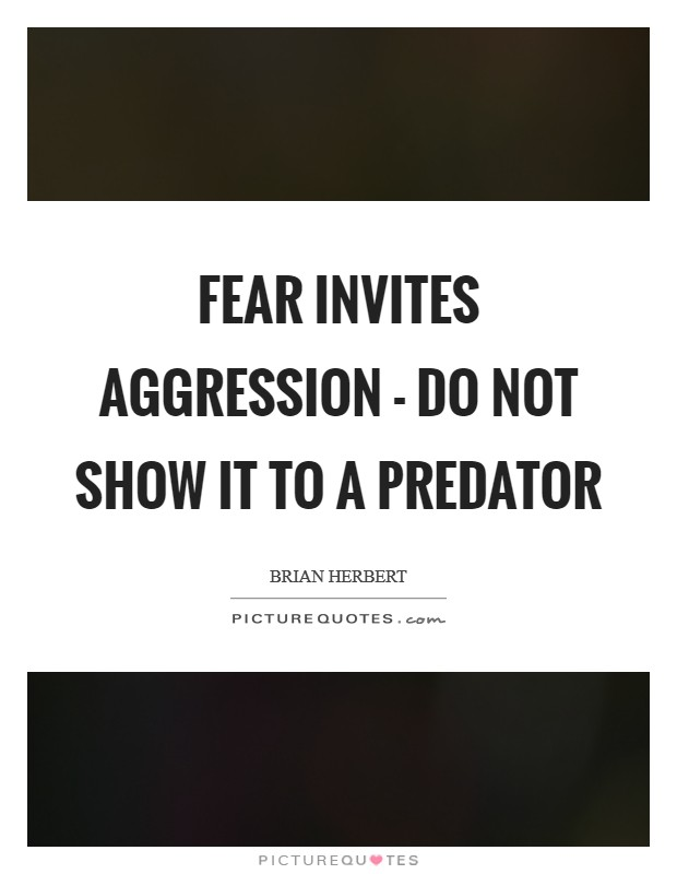 Fear invites aggression - do not show it to a predator Picture Quote #1
